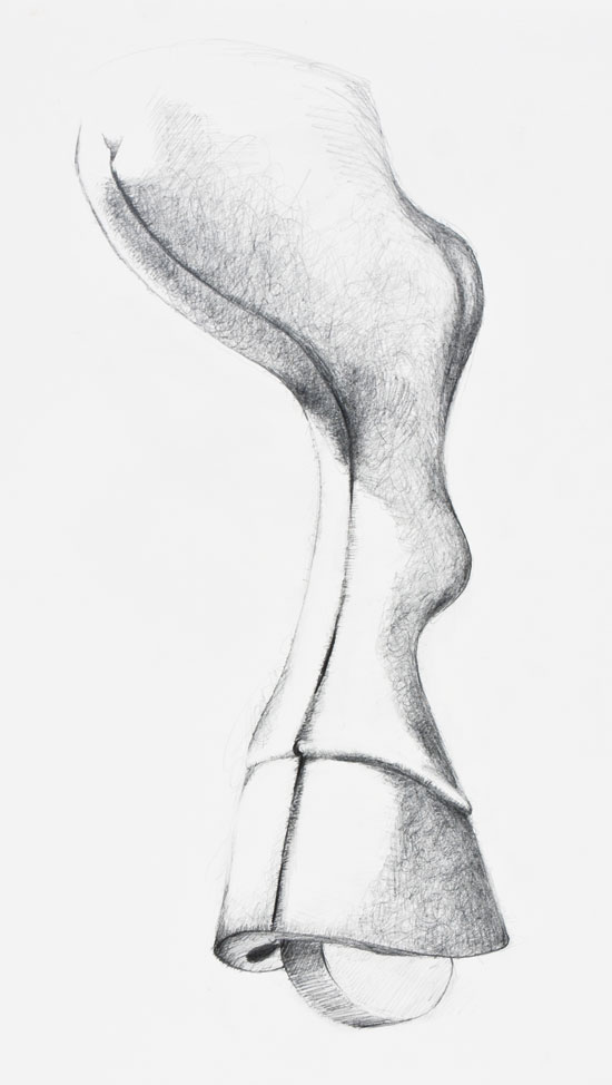 Pencil drawing of horse's hoof conflated with wheel